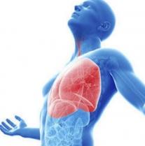 Польза кислорода при аэробных физических нагрузках